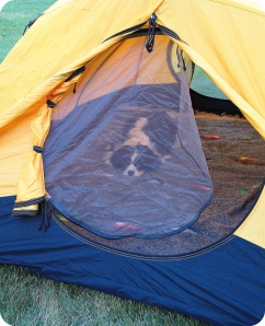 Vishnu inspecting the tent