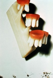 teeth-and-gums plant